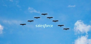 Salesforce データマイグレーション入門