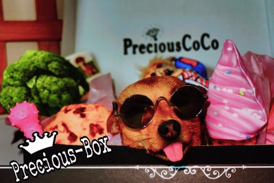 PreciousCoCo Photo 3