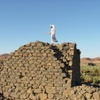Qamos Fortress, Abi Fort (Khaybar, Saudia Arabia, 2008)