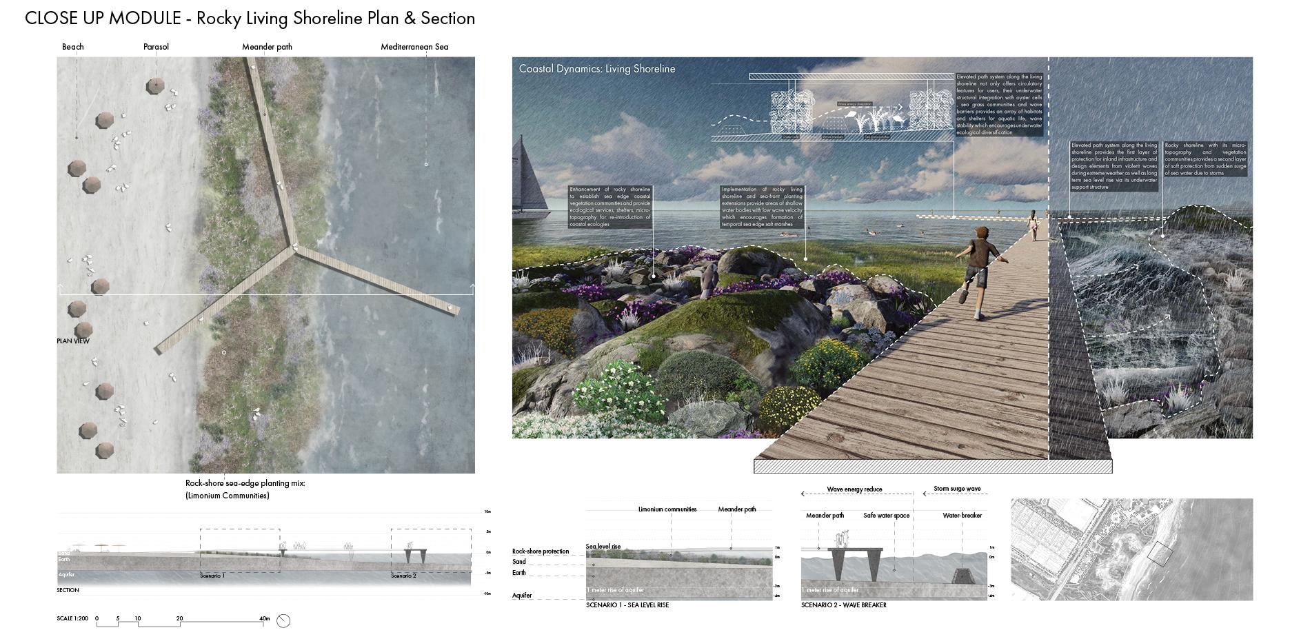Close Up Module - Rocky Living Shoreline