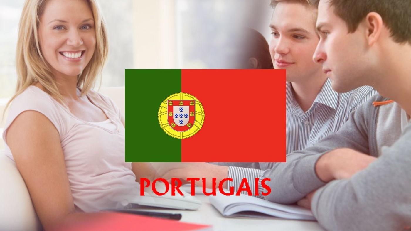 Représentation de la formation : langues vivantes portugais
