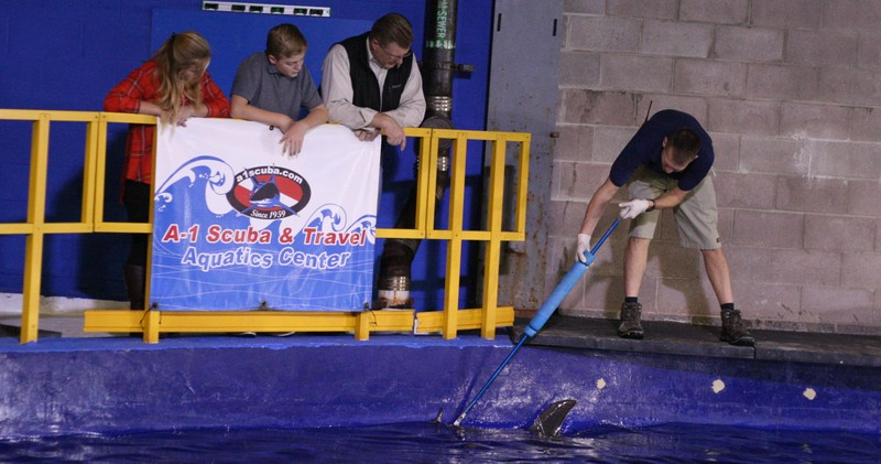 Shark meet and greet downtown aquarium denver encounters come see our sharks behind the scenes m4hsunfo