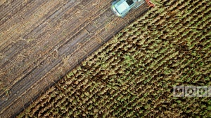 MODIFI Announces $1.3m Credit Line for Agro Trader in Dubai Image