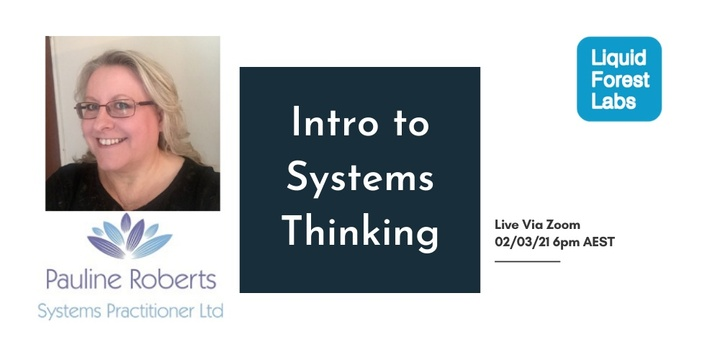 Introduction to Systems Thinking Event Banner