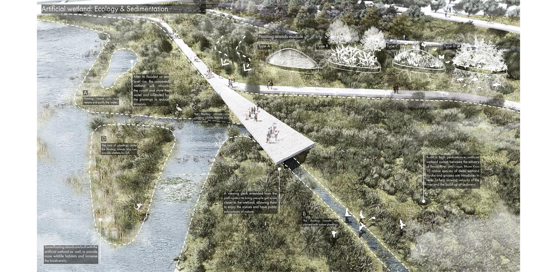 Artificial Wetland: Ecology & Sedimentation