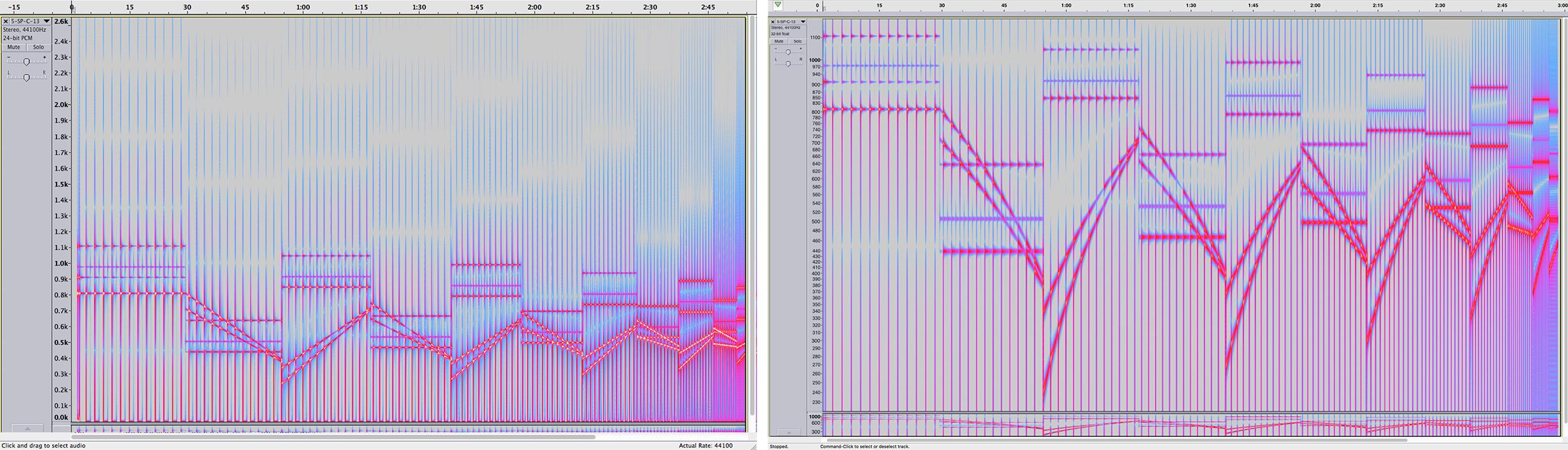 Spectrogram of *SP/C/13* in Audacity.