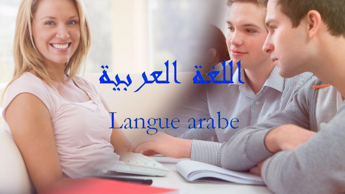 Représentation de la formation : langue arabe