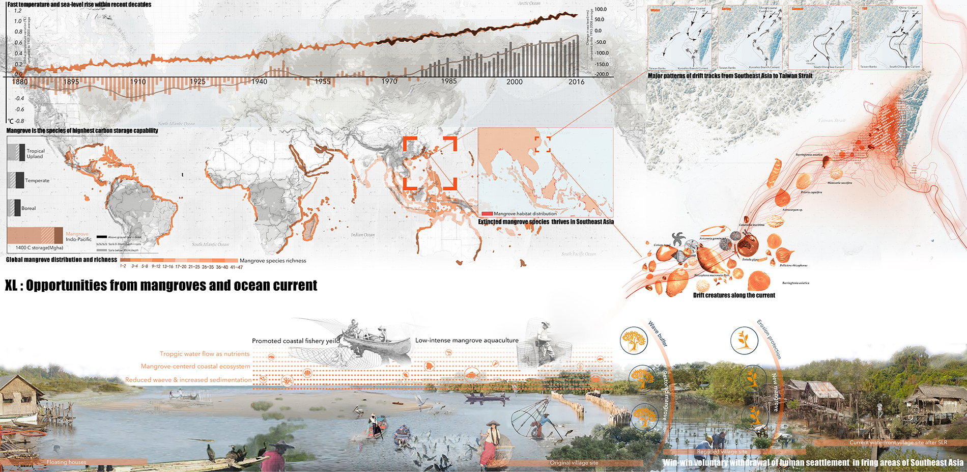 XL: Opportunities from Mangrove and Ocean Current