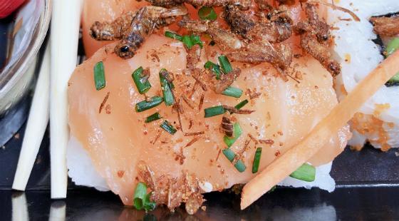 Abokado Bugs on sushi