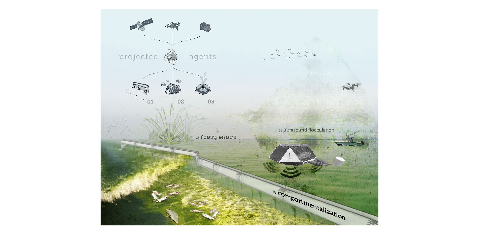 Projected Agents - Open Water Body Mitigation