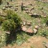 Tighedouine Cemetery, Grave [1] (Tighedouine, Morocco, 2010)