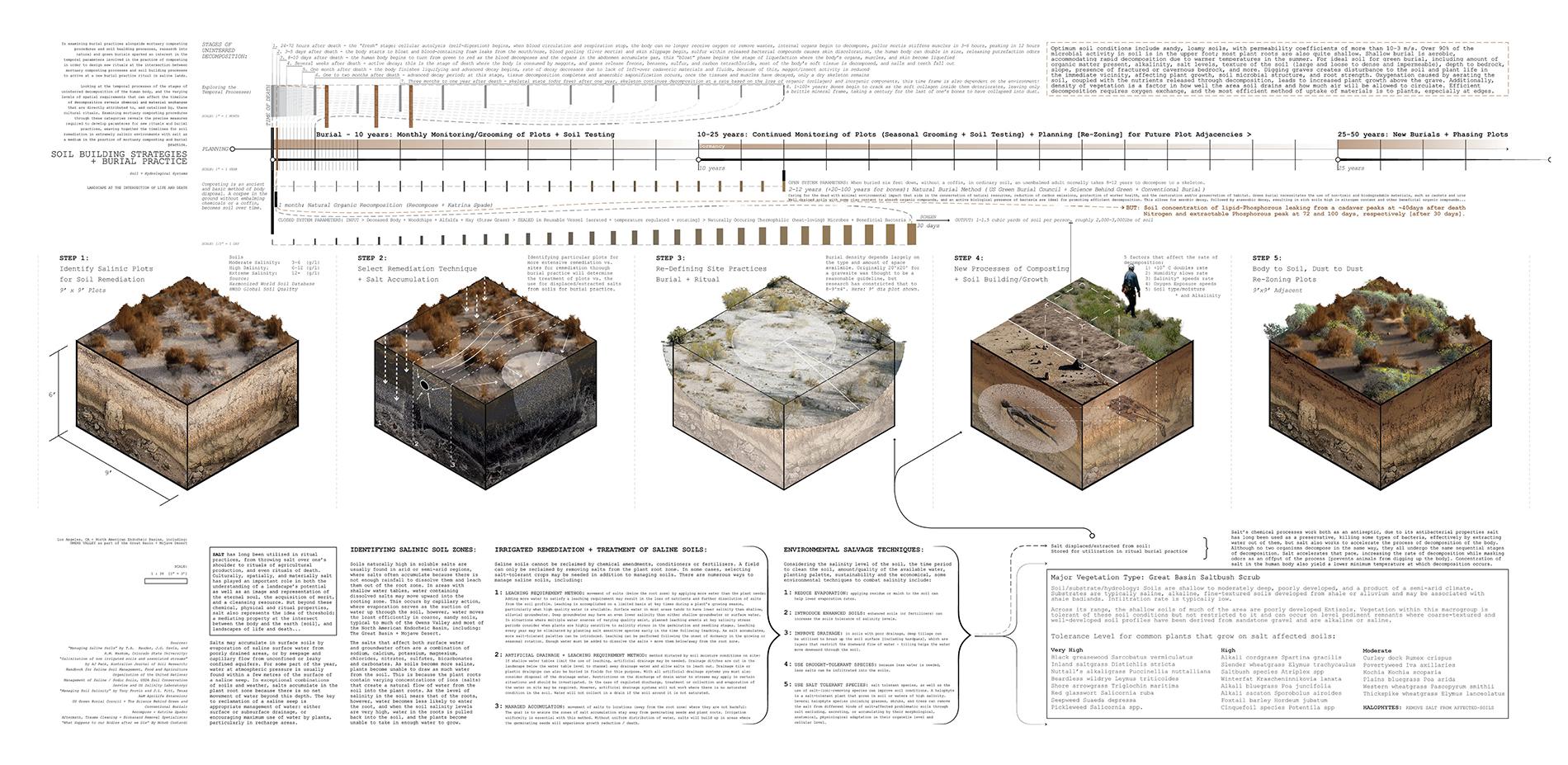 Soil Building Strategies + Green Burial Practices