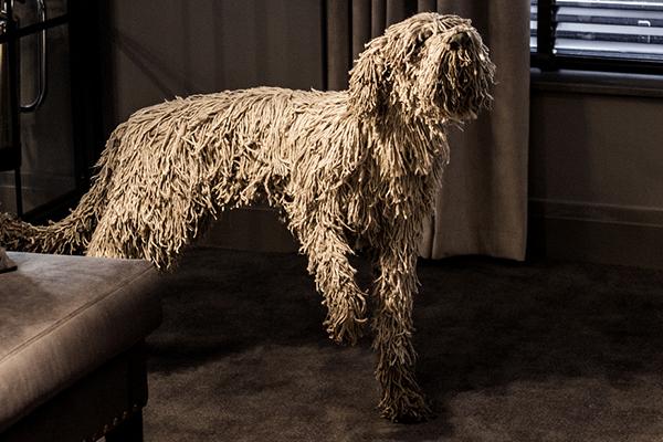 Dakota Deluxe hotel's rope dog Fetcher