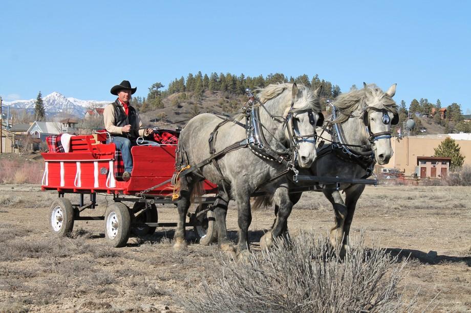 Private Horse Ride