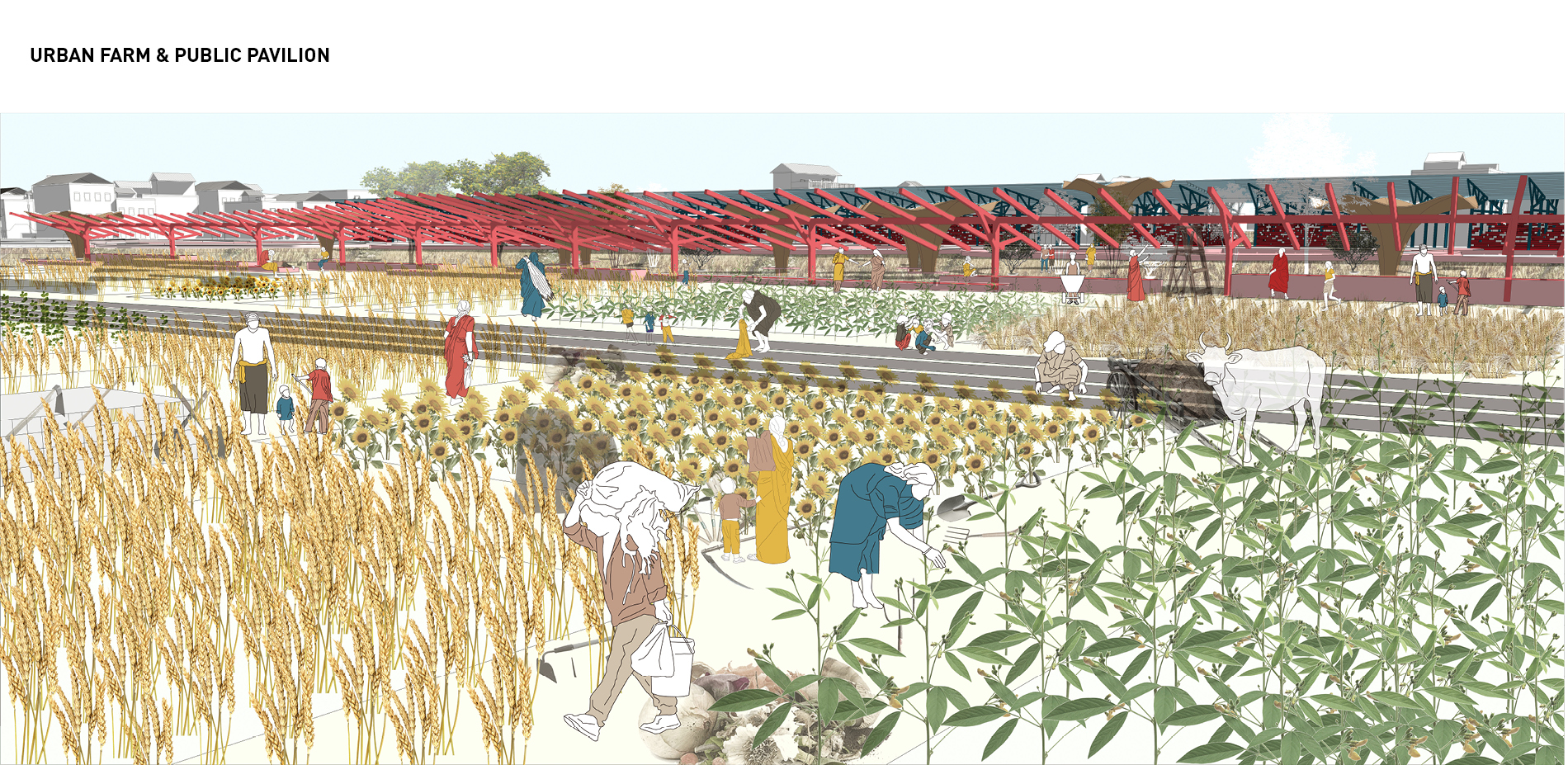 Vision for Type C: Urban Farm