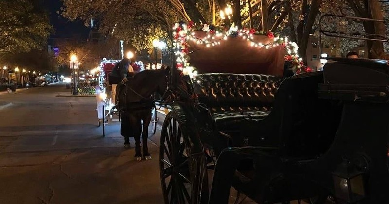 reservations are required - Christmas Light Tour
