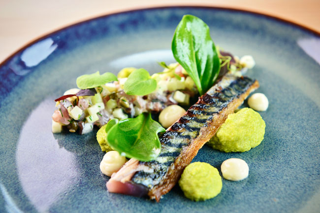Scorched mackerel, tartar, apple, cucumber, avocado and oyster leaves