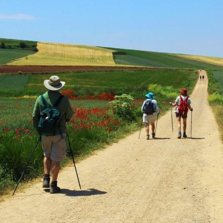 Camino de Santiago The Way