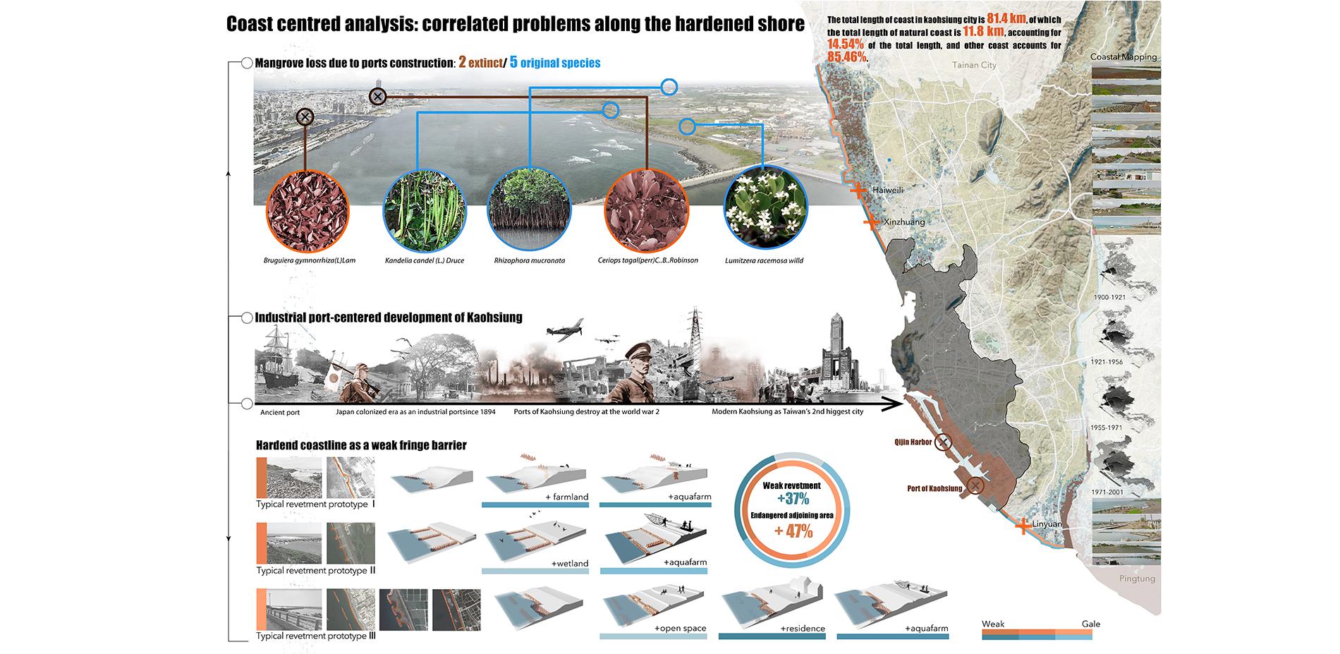Coast Centered Analysis: Correlated Problems along the Hardened Shore