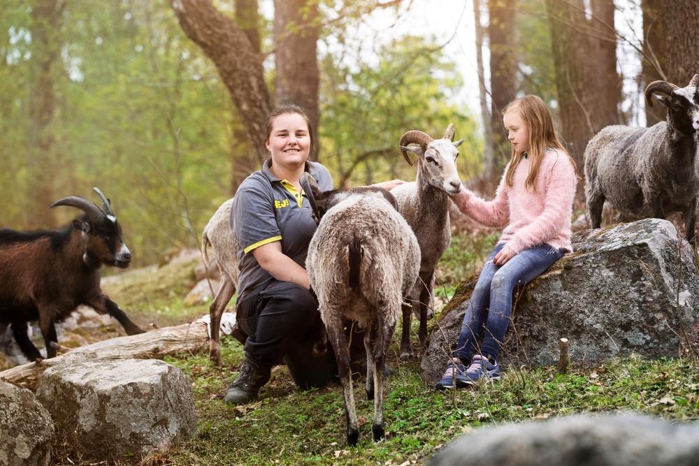Utbildning Parken Zoo och Svenska Djurskyddsföreningen