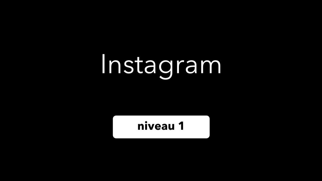 Représentation de la formation : Usage professionnel Instagram