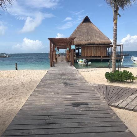 Isla Mujeres & Whale Shark Experience 4D/3N