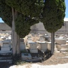 Grave Sites 9,  Borgel Jewish Cemetery at Tunis, Tunisia, Chrystie Sherman, 7/19/16