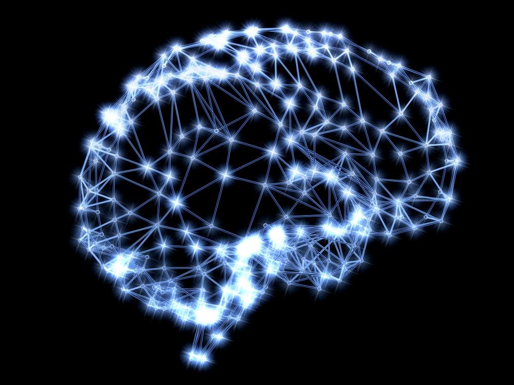 Cartana utvecklar en teknik som kartlägger hjärnan utifrån cellanalys och bilddata med en upplösning ända ner på encellsnivå.