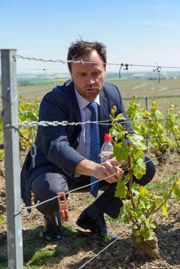 soty moet-director-montaigu vineyards visit-fred-laures-25