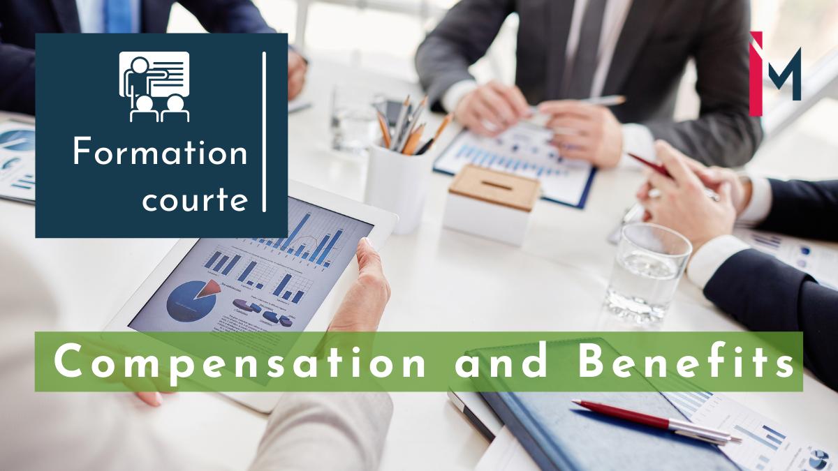 Représentation de la formation : Finance, comptabilité et engagements sociaux pour Comp & Ben formation courte