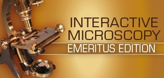 Interactive Microscopy: Emeritus Edition 2017