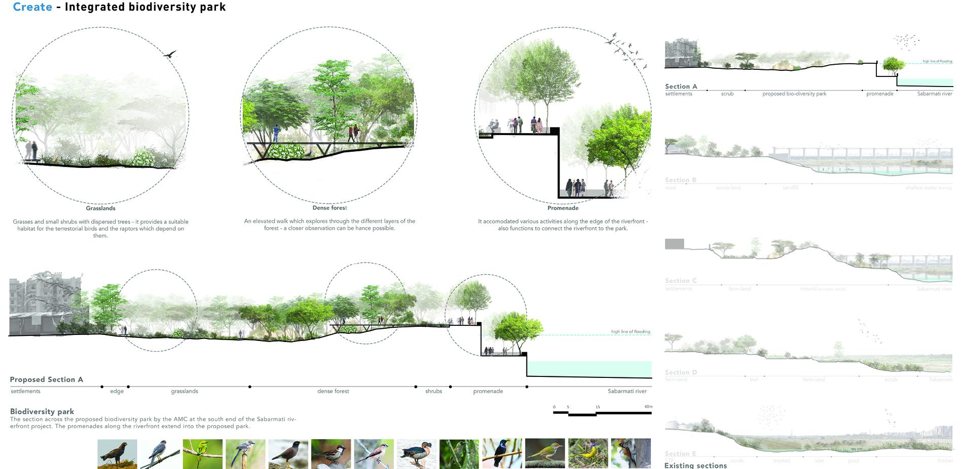 Create - Biodiversity park