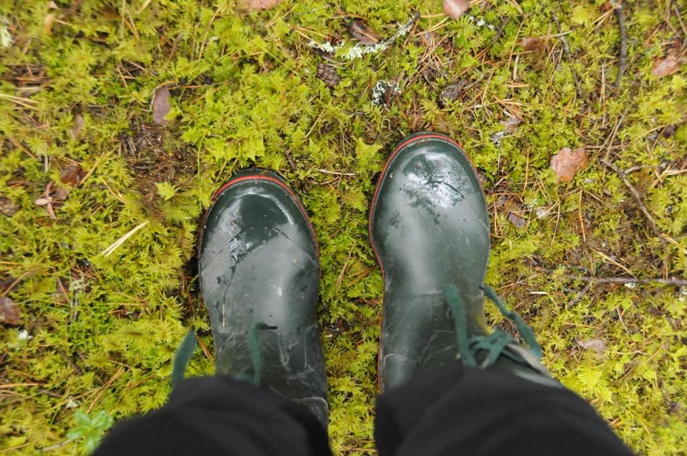 Gummistövlar i skogen. Foto: Ulrika Lagerlöf/Skogssällskapet