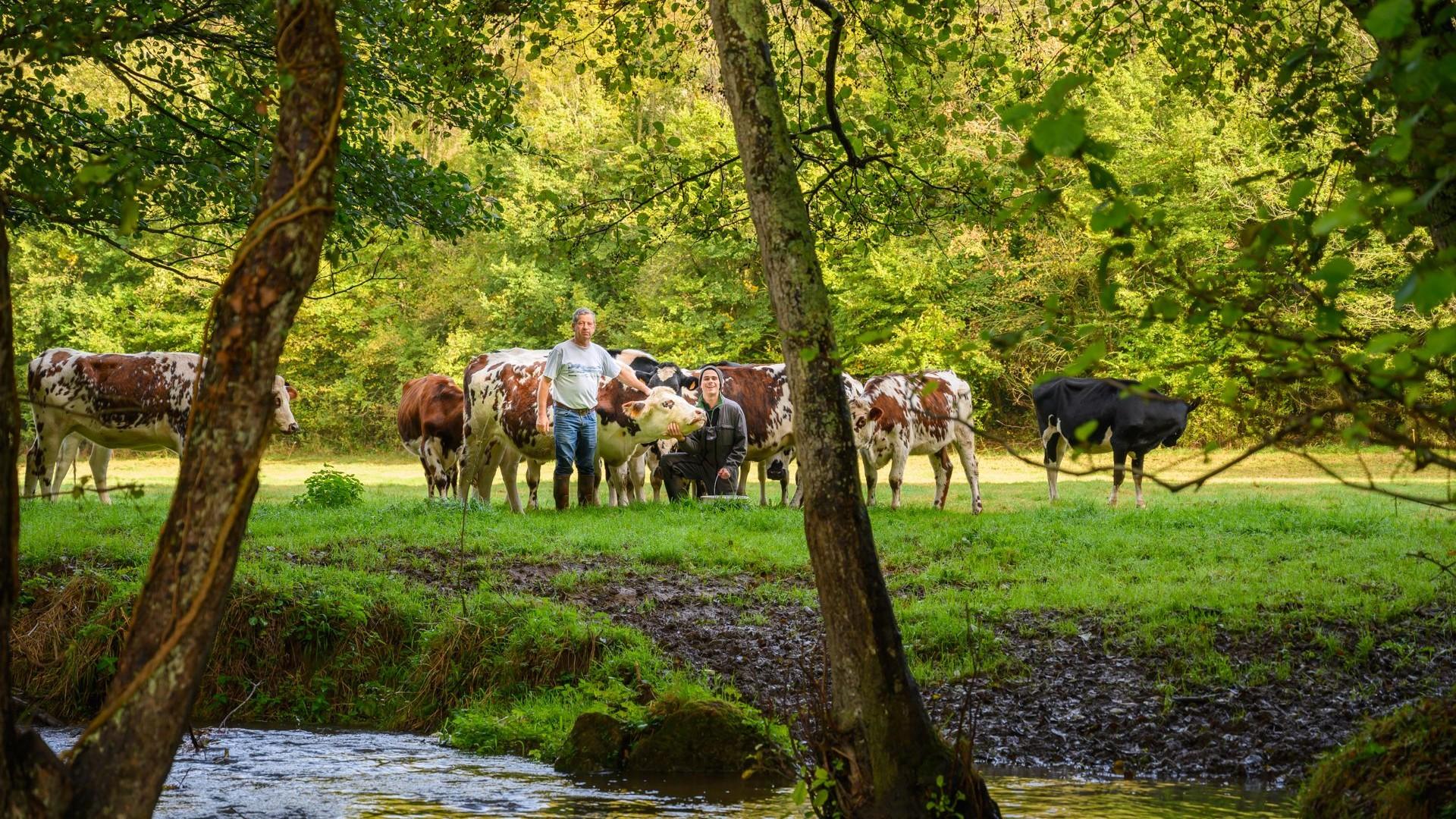 Représentation de la formation : Approche globale d'une exploitation agricole
