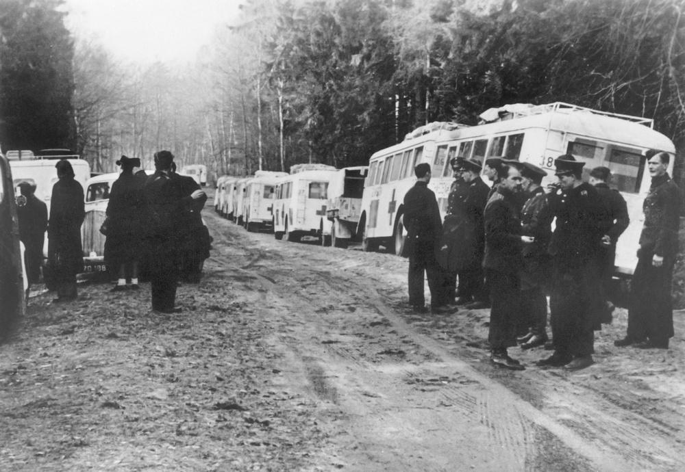 """Räddningsinsatsen med  """"de vita bussarna"""" 1945.  Foto: Röda Korset"""