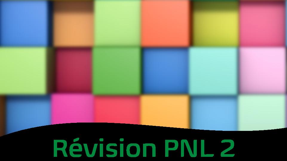 Représentation de la formation : Révision 2 - Technicien PNL