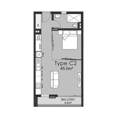 Type C2