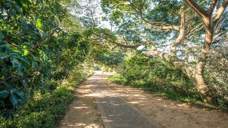 Walkway / path