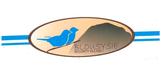 Blousysie logo