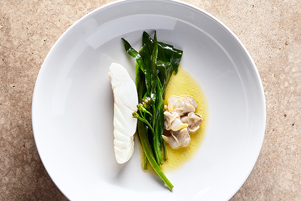Turbot, cockles and greens