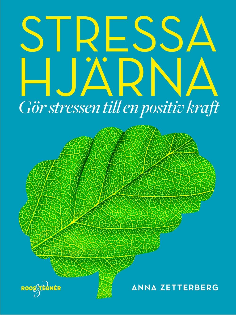 Boksomslag: Stressa hjärna - Gör stressen till en positiv kraft