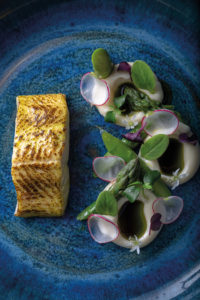 Steamed and charred Arctic charr, wild garlic oil, citrus emulsion, New Forest asparagus and radish