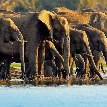Tanzania 4 Day Camping Safari