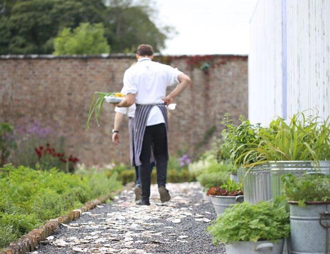 The kitchen garden at Virginia Park Lodge