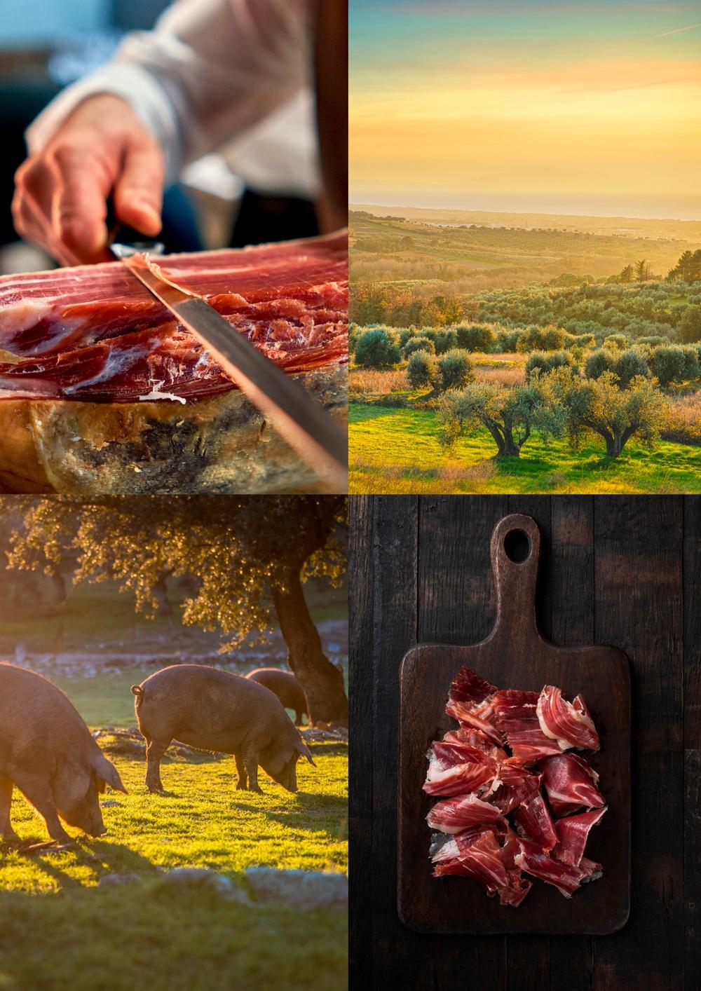 Närproducerad gårdschark i Toscana, Italien.