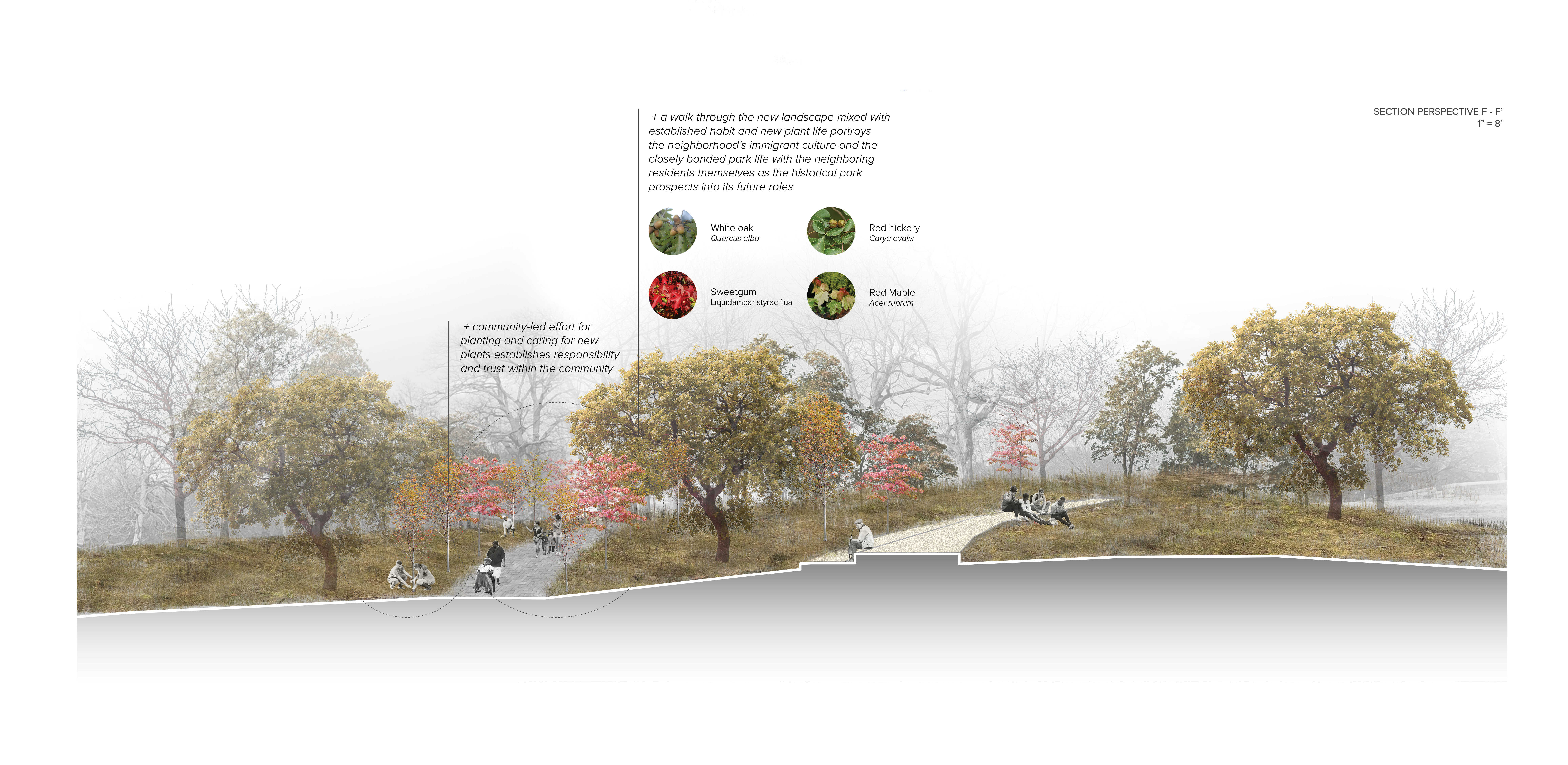 Focus Area Site Design - Reciprocity