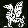 NewSPORT logo