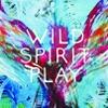Wild Spirit Play logo