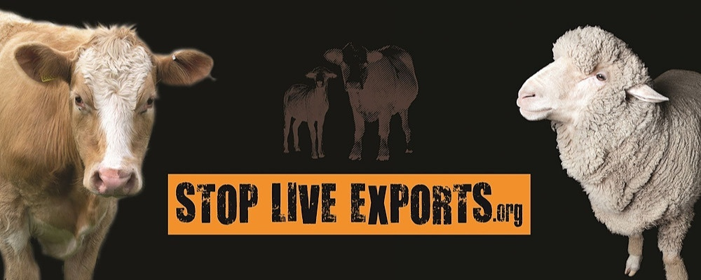 Stop Live Exports Annual Quiz Night Event Banner