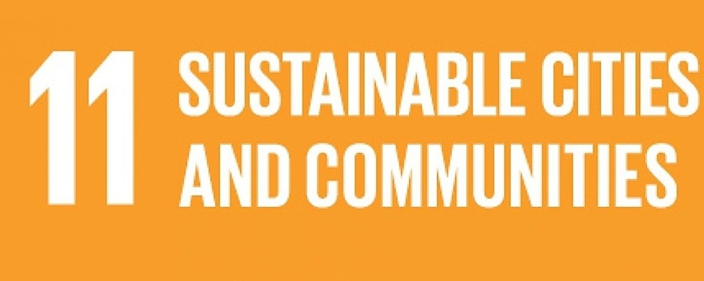 2019 Sustainable Cities and Communities Model UN Event Banner